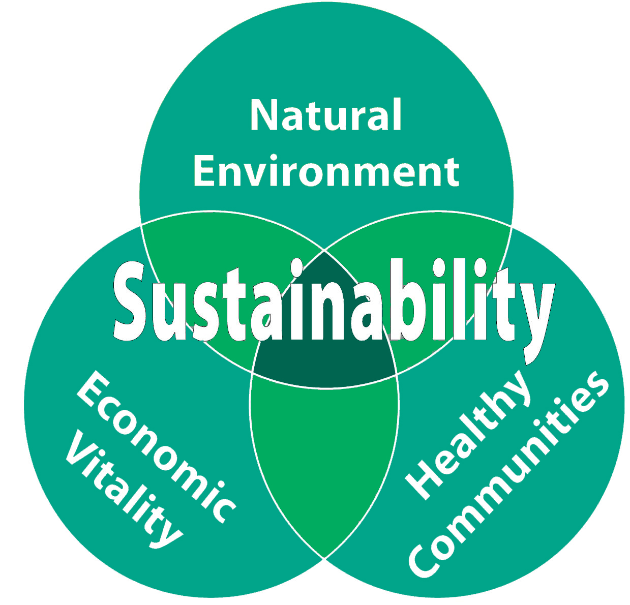 explore sustainable design principles to help develop solutions